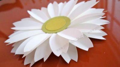 Cách làm hoa daisy xinh xắn bằng bấm hoa 6 cánh